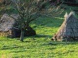 Sardinian huts